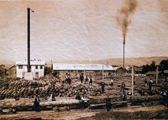 Предприятие на дървообработващата промишленост